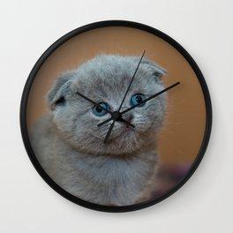 Cat_20180102_by_JAMFoto Wall Clock