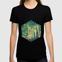 Stand of birch trees with small pathway lined in grasses running through it T-shirt