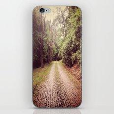 Cemetery Way iPhone & iPod Skin