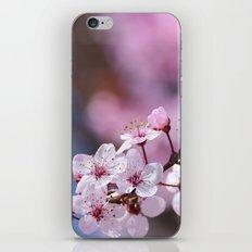 Pink...... iPhone & iPod Skin
