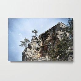 Tree on rock Metal Print