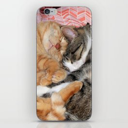 Nap Buddies iPhone Skin