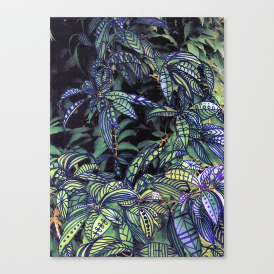 leaves evolved 4 Canvas Print