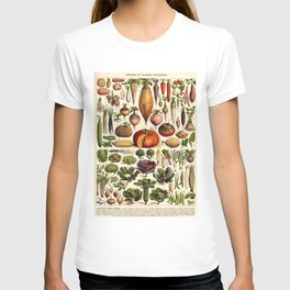 Adolphe Millot Legumes Plant Potageres Vintage Scientific Encyclopedia Illustration Lithograph  T-shirt