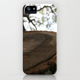 Nature Cracked iPhone Case