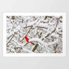April Snowfall I Art Print