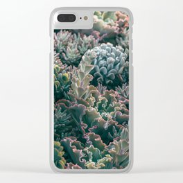 Mornings In The Succulent Garden #1 Clear iPhone Case