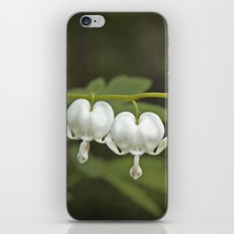 White Bleeding Hearts with Green iPhone Skin