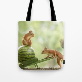 squirrel load Tote Bag