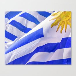 Uruguay Flags Close Up Photo Canvas Print