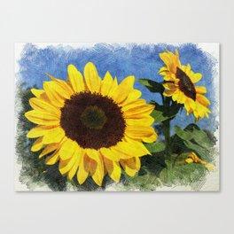 Mammoth Sunflowers Reaching to the Sun Canvas Print