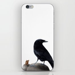 Raven and mouse on a rock sitting next to each other iPhone Skin
