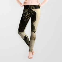 Red-tailed Hawk Leggings