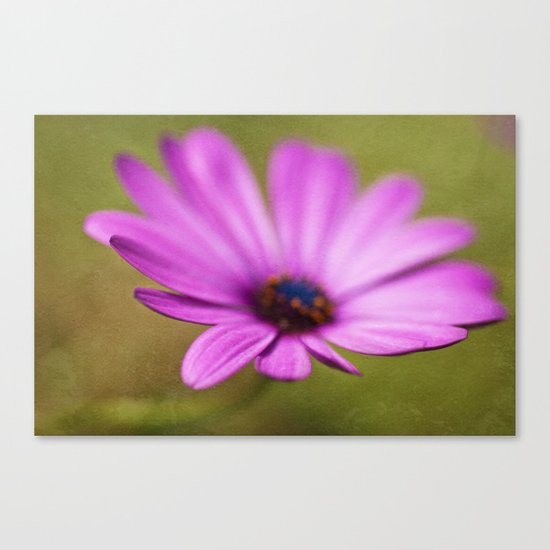Purple Textured Flower II Canvas Print