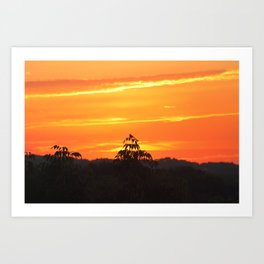 Red Sky Sunset with Red Robin Art Print