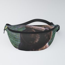 Play Time Fanny Pack