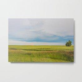 July Fields, North Dakota 2 Metal Print