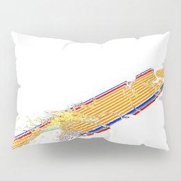 V2R10 Pillow Sham