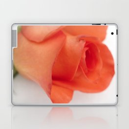 Orange Rose Laptop & iPad Skin