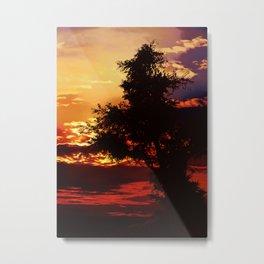 Baum im Abendrot Metal Print