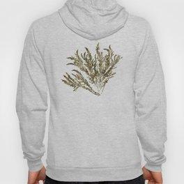 Seaweed Plant Hoody