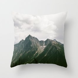 LIVE WILDLY Throw Pillow