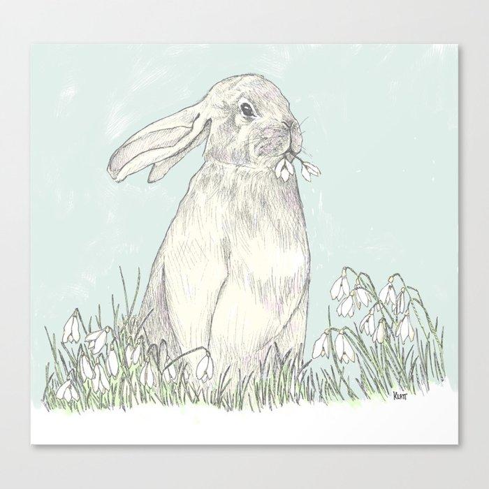 bunny II Canvas Print