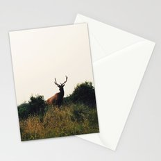 Prairie Creek Elk Stationery Cards