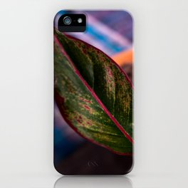 Chinese Evergreen Plant - Red and Green iPhone Case