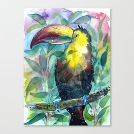 TOUCAN, watercolor illustration (nature) Canvas Print