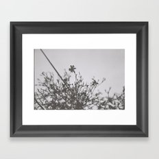 small blooms Framed Art Print