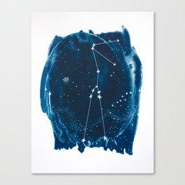 Taurus Zodiac Print Canvas Print