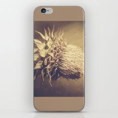 Beyond What We Know iPhone & iPod Skin