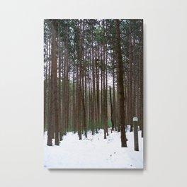 michigan winter Metal Print