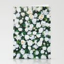 White Roses by newburydesigns