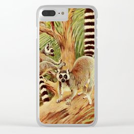 Kuhnert, Friedrich Wilhelm (1865-1926) - Wild Life of the World 1916 v.3 (Ring-tailed Lemur) Clear iPhone Case
