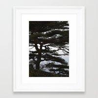 korean Framed Art Prints featuring Korean Trees by Beth Purvis