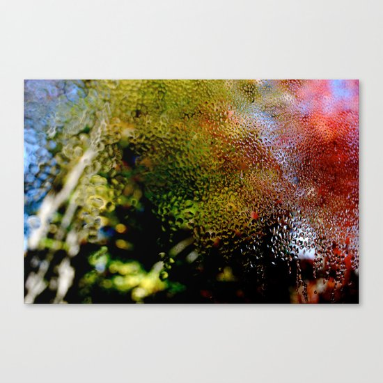 Dew Canvas Print
