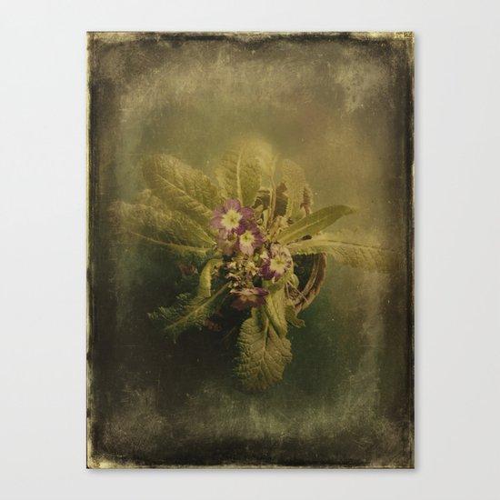 Little Winter Flower Canvas Print