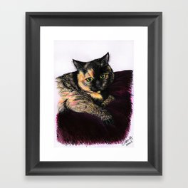 My Cat - DOTTY  Framed Art Print
