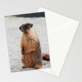 My Furry Friend Stationery Cards