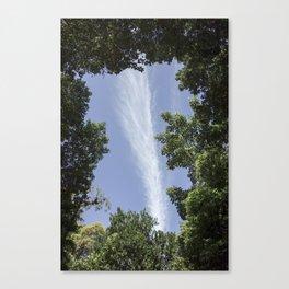 Tikal #1 Canvas Print