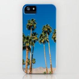 Palm Springs Palms IV iPhone Case