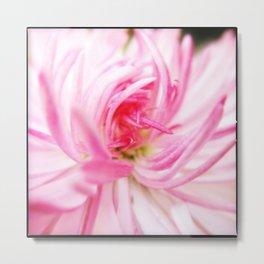 Rediscover pink. Metal Print