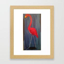 Floridian Flamingo  Framed Art Print
