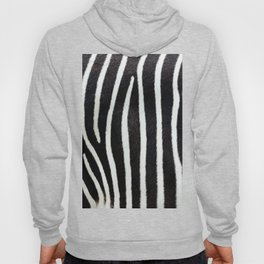Close-up view of zebra fur animal skin - vintage abstract illustration pattern Hoody