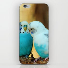 Lovely Pair Of Budgies iPhone Skin