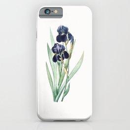 German Iris Flower Illustration iPhone Case