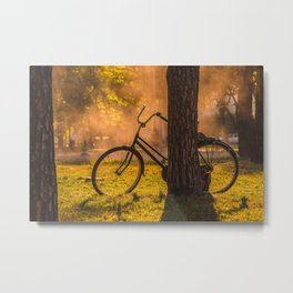 Bicylce Resting against a Tree Metal Print