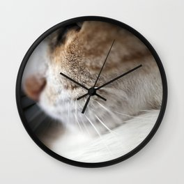 Whiskers Wall Clock